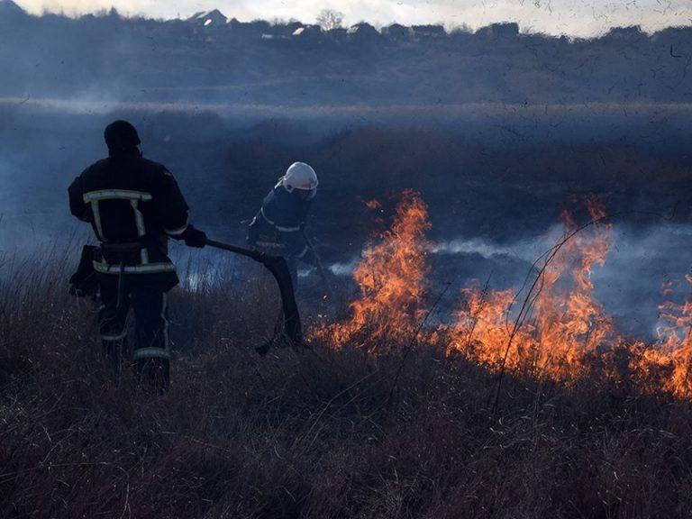 Спалювання рослинних залишків є прямим порушенням чинного законодавства