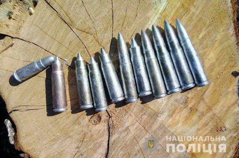 У Новобузькому районі поліцейські вилучили у місцевого мешканця близько півсотні боєприпасів різного калібру