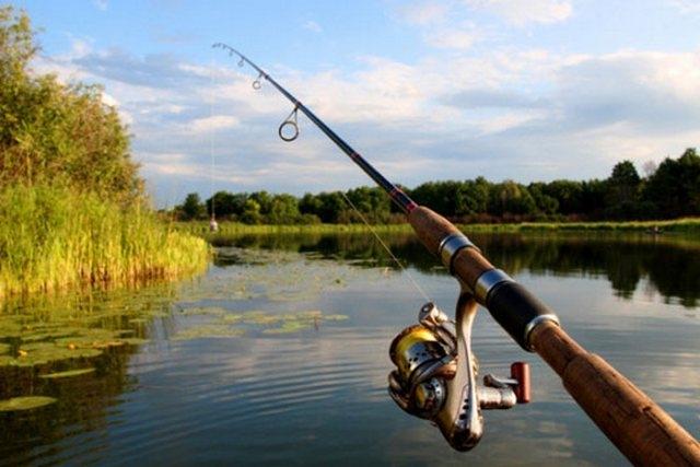 Кубок клубу «ЧЕМПІОН» зі спортивної ловлі риби фідером 2020 р. на території Софіївського водосховища