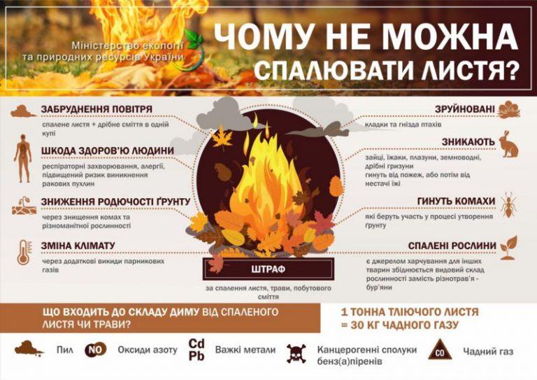 Спалювання опалого листя